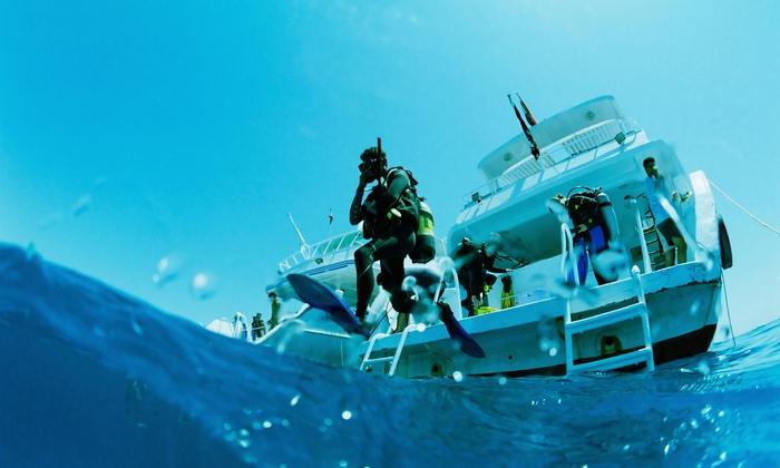 Gulf Coast Divers - Gulf Coast Divers LLC: Open-Water Scuba-Diving Certification at Gulf Coast Divers (50% Off)
