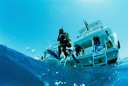 OpenWater ScubaDiving Certification at Gulf Coast Divers (50% Off)