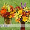 Half Off at Flowers from the Heart