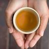 Fava Tea Company – $5 for Loose-Leaf Tea