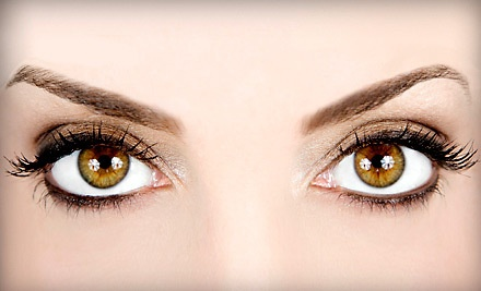 Eye Brow Wax (a $15 value) - The Studio Chic in Cuyahoga Falls