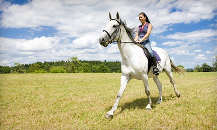 Equine Kingdom Riding Academy - Greensboro: Horseback Trail Ride for One or Four at Equine Kingdom Riding Academy in Greensboro