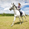 Up to 58% Off Trail Ride