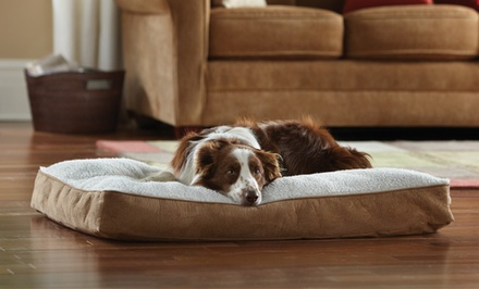 Animal Planet Memory Foam Pet Beds. Multiple Sizes Available. Free Shipping and Returns.