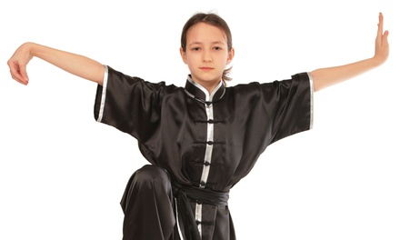 Six Youth or Adult Program Martial Arts Classes and a T-Shirt at Tulsa Kung Fu (59% Off)