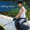 Half Off Equine Riding & Care Lesson in Medina