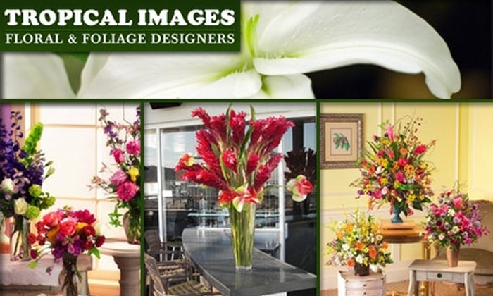 Tropical Images - Druid Hills South: $37 for $75 Worth of Flowers, Balloons, and Gifts at Tropical Images