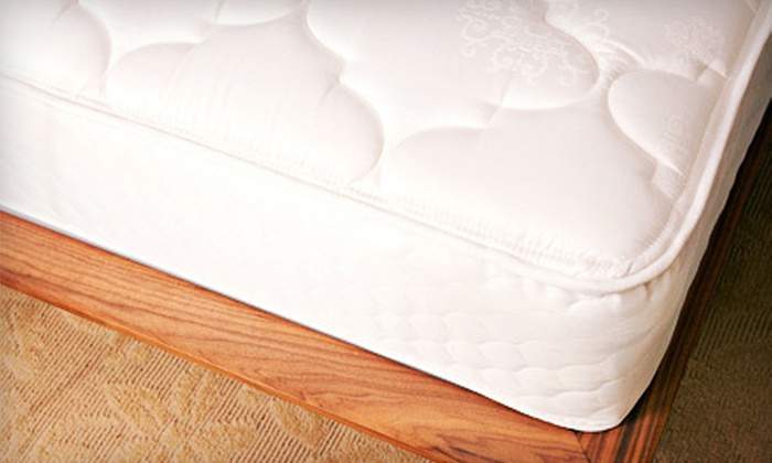 Mattress Warehouse of Tampa Bay - Tampa: $50 for $200 Toward Mattresses at Mattress Warehouse of Tampa Bay