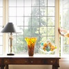Up to 70% Off Window Cleaning