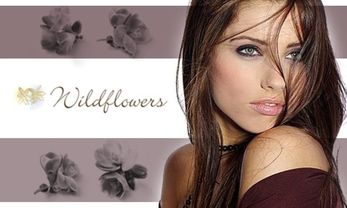 Wildflowers Salon & Spa - Maineville: $35 for $70 Worth of Services at Wildflowers Salon & Spa