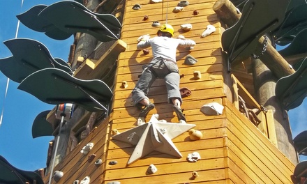 Climbing Course for One, Two, Four, or Six on the Kaull Adventure Tower at Red Mountain Park (Up to 45% Off)
