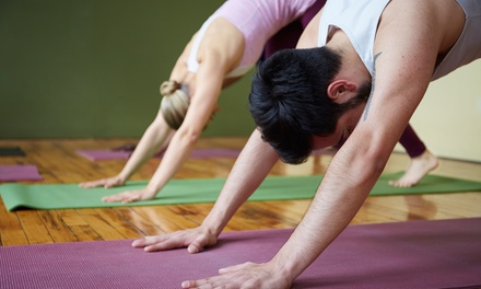 Adult Yoga Classes at LiLa Family Yoga (Up to 68% Off). Three Options Available.