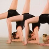 Half Off Dance or Fitness Classes