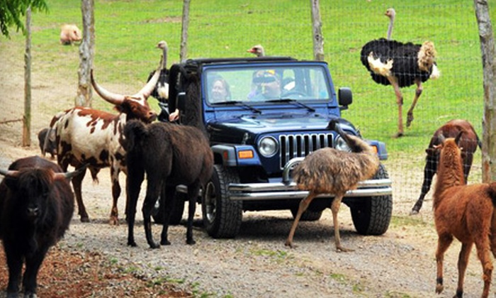 Circle G Ranch - Strawberry Plains: $14 for a Drive-Thru Safari for Two at Circle G Ranch in Strawberry Plains (Up to $28 Value)
