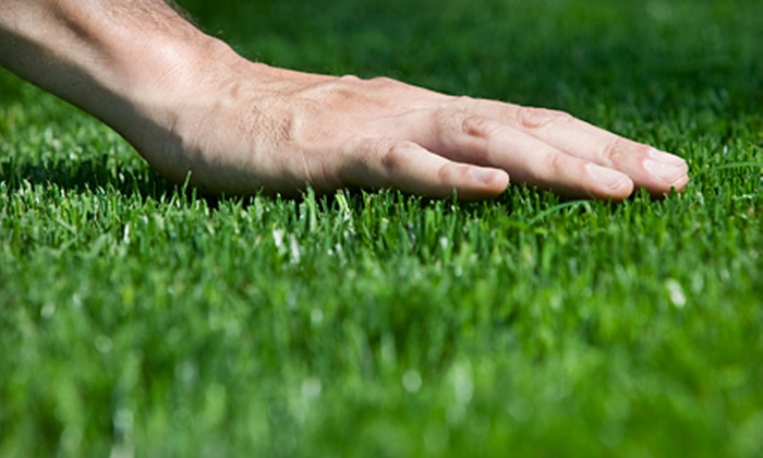 New Nature Landscaping, LLC - Ocala: $39 for Two Lawn-Care Visits from New Nature Landscaping, LLC ($80 Value)