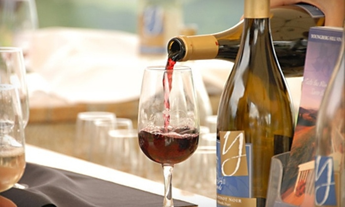 Youngberg Hill Vineyard & Inn - Sheridan: $5 for a Wine Tasting for Two ($10 Value) and 25% off Wine Purchases at Youngberg Hill Vineyard & Inn in McMinnville