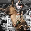 61% Off Bull Riders World Cup Ticket