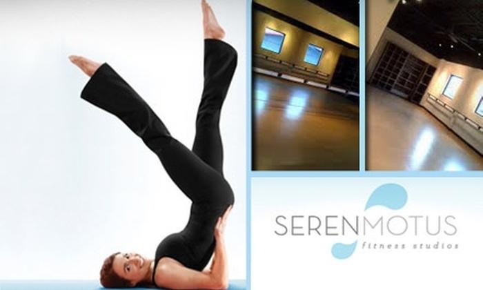 Seren Motus Fitness Studios - Franklin: $22 for Five BarreAmped Classes at Seren Motus Fitness Studios