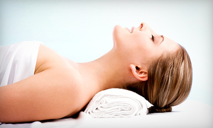 Skin Spa Austin Lounge - Downtown: Pumpkin-Spice Aromatherapy-Massage Package or Pumpkin-Enzyme Facial Package at Skin Spa Austin Lounge (52% Off)