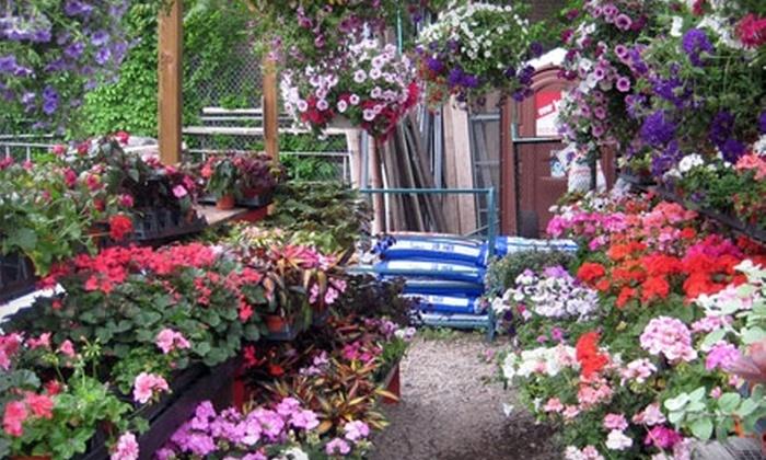 The Urban Gardener - California-Kirkbride: $25 for $50 Worth of Nursery Items at The Urban Gardener