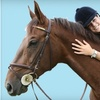 51% Off Horseback Riding Lessons in Fort Collins