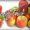 "Bountiful Fruit - Kansas City: $22 for a Dozen ""Taste of Washington"" Apples Plus Delivery From Bountiful Fruit ($45 Value)"