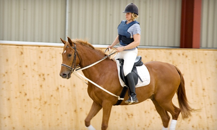 Creekside Acres - Chemung: One, Three, or Five 30-Minute Private Horse-Riding Lessons at Creekside Acres in Harvard (Up to 68% Off)