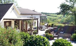 Cwm Deri Vineyard: Wine Tasting for Two, Four or Six at Cwm Deri Vineyard (Up to 54% Off)