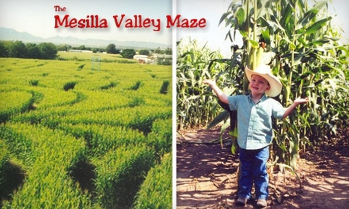 Mesilla Valley Maze - Fairacres: $5 for One Admission and a Take-Home Personal Pumpkin at Mesilla Valley Maze in Las Cruces (Up to $11.50 Value)