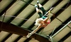 Trapeze Texas - Multiple Locations: One- or Two-Hour Flying-Trapeze Lesson at Trapeze Austin (Up to 51% Off)