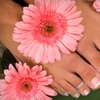 Up to 51% Off Salon Services in Maple Grove