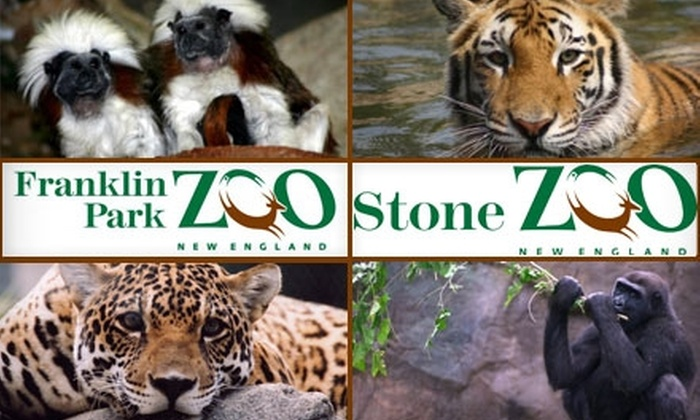 Zoo New England - Roxbury: $55 for a One-Year Friend-Level Membership to Zoo New England ($110 Value)