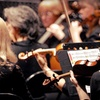 The American Philharmonic – Half Off Concert