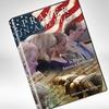 Prayer in America DVD