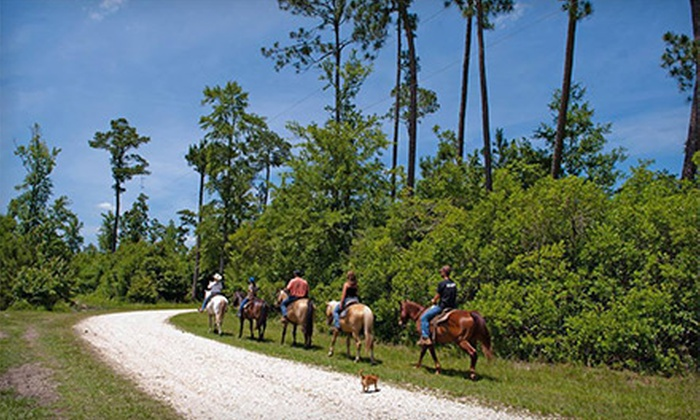 Splendor Farms - Bush, LA: One- or Two-Night Stay for Two with Breakfast, Fishing, and Horseback Riding at Splendor Farms (Up to 51% Off)