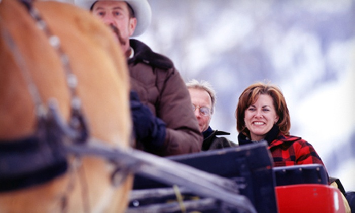 Heritage Ranch - Red Deer: Horse-Drawn Carriage, Sleigh, or Wagon Rides for 2, 4, or Up to 10 People at Heritage Ranch in Red Deer (Up to 55% Off)