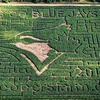 Up to 53% Off Farm Visit with Corn Maze