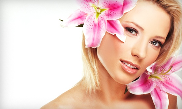 Body Bliss Wellness Center - Mokena: One or Three Microdermabrasion Treatments at Body Bliss Wellness Center in Mokena (Up to 66% Off)
