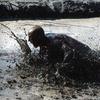 51% Off Hog Wild Mud Run