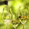 52% Off Purple Foot Wine Making Kit