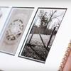 54% Off Alphabet Photos from Sticks and Stones
