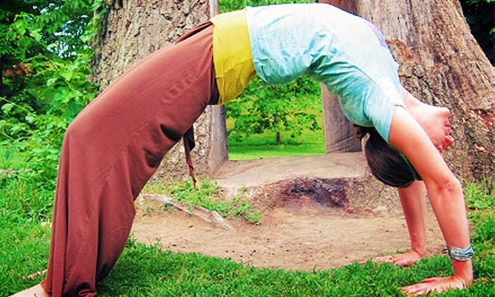 Yoga DrishTi - East Avenue: 5 or 10 Yoga Classes at YogaDrishTi(Up to 65% Off)