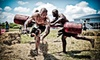 Washington Spartan Sprint Race - Washougal MX Park: $66 for Entry to Spartan Race with T-shirt and Spectator Ticket at Washougal MX on Sunday, August 4 (Up to $145 Value)