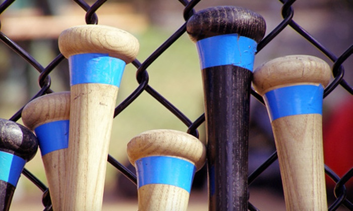 Stella's - Lyons: One or Two Five-Week Batting-Cage Rentals or 10 Batting-Cage Tokens Plus a Food Credit at Stella's (Up to Half Off)