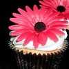 Up to 65% Off at Cake by Paula in Bridgewater