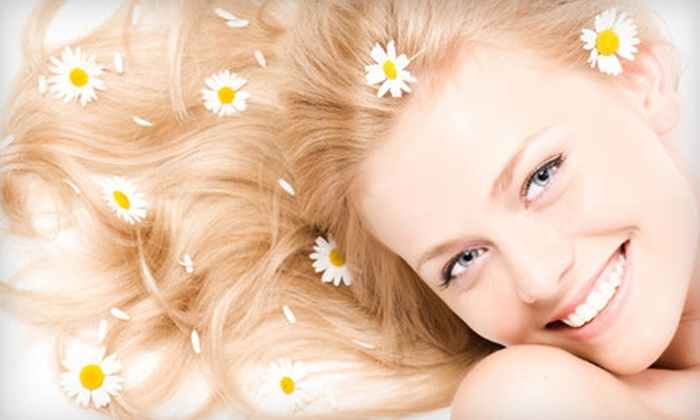 Silver Image Salon - Oak Creek: $99 for a Spa Package with Highlights, Style, and Manicure at Silver Image Salon in Mt. Juliet ($212 Value)