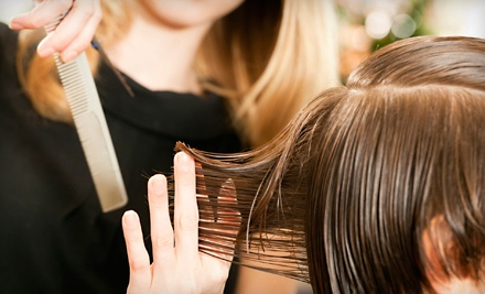 Salon Package w/Haircut and Style, Conditioning Treatment, and Single-Process Color or Partial Highlights (a $110 value) - Camby Salon and Barber Shop in Camby