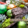 58% Off Wildwood's Holiday Tour of Homes