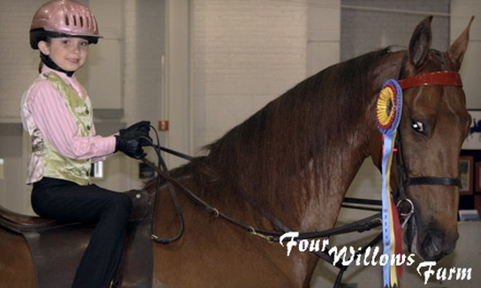 Four Willows Farm - Clark: Up to 53% off Horseback-Riding Lessons at Four Willows Farm in Greenwood. Choose Between Two Options