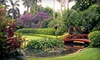Sunken Gardens – Half Off Visit or Membership